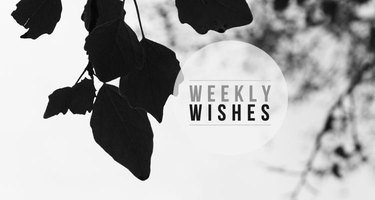 weeklywishes20130826