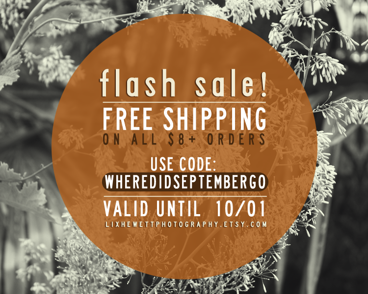 flashsale