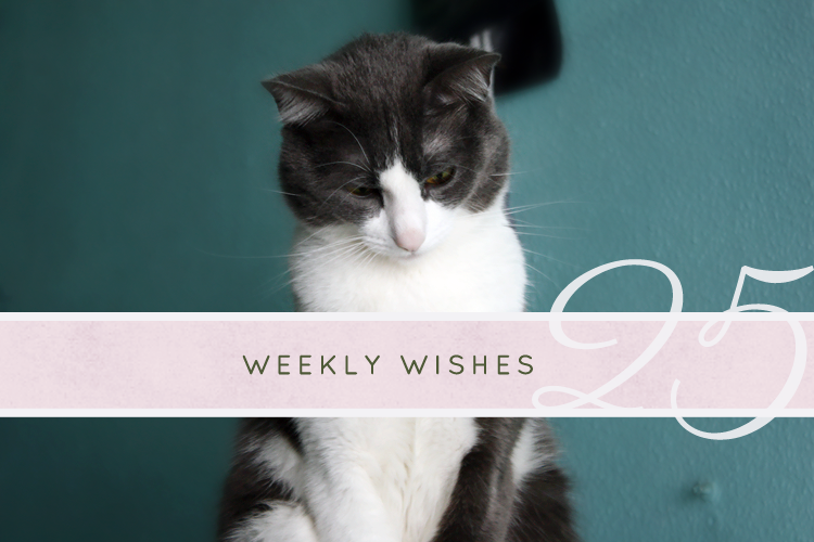 weeklywishes20140217