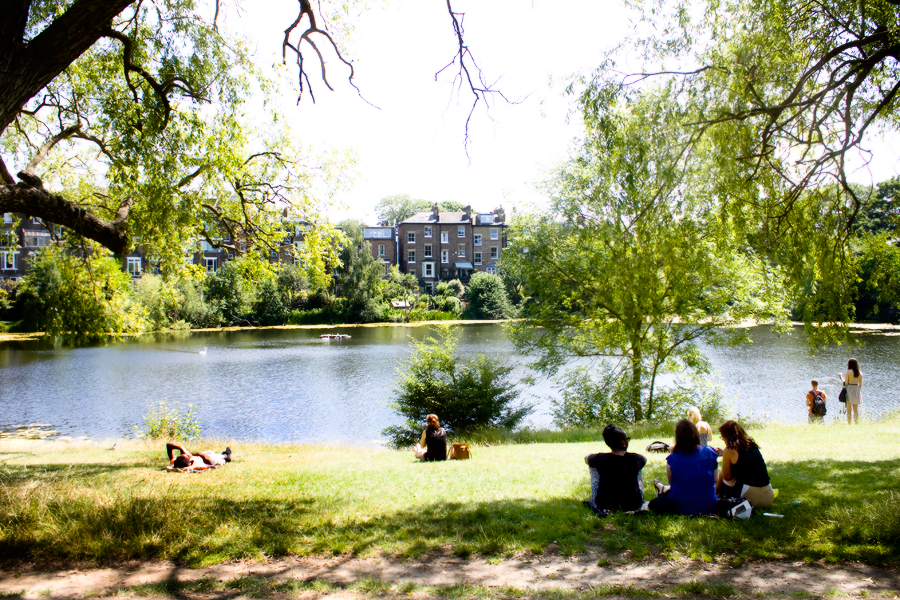 Hampstead Heath on a summer day