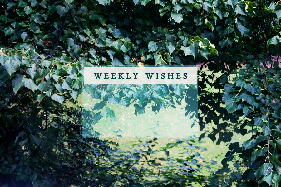 weekly-wishes-9-29